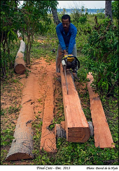 Coconut Planks